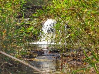 Small creek cascade.