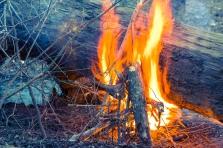 Bonfire time.